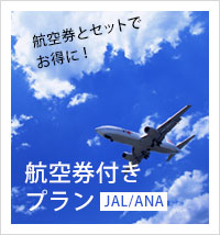 航空券付きプラン