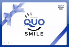 【QUOカード】 3000円つき ★ビジネス利用におすすめ★