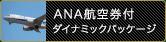 ANA航空券付ダイナミックパッケージ