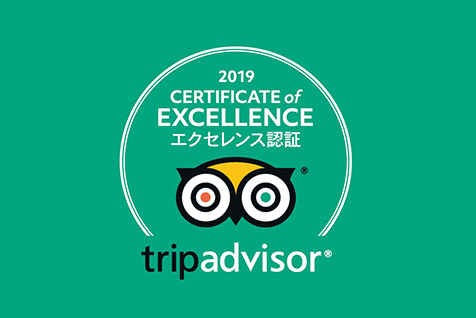TripAdvisor Received a Certificate of Excellence in 2019